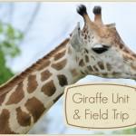 giraffe_unit